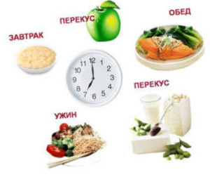 сколько раз в день питаться