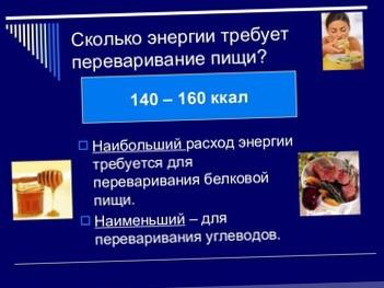 Термический эффект пищи