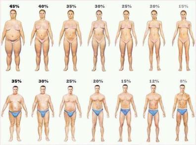 Сравнить содержание жира по фотографиям