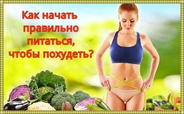 как начать правильно питаться чтобы похудеть