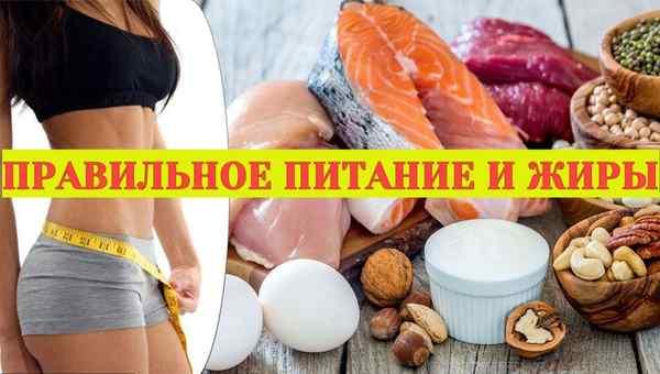 правильное питание и жиры