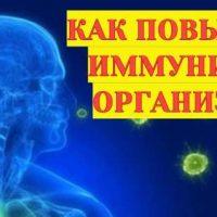 Как повысить иммунитет организма?
