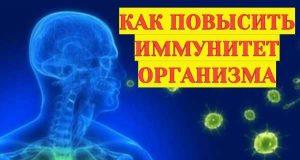 как повысить иммунитет организма